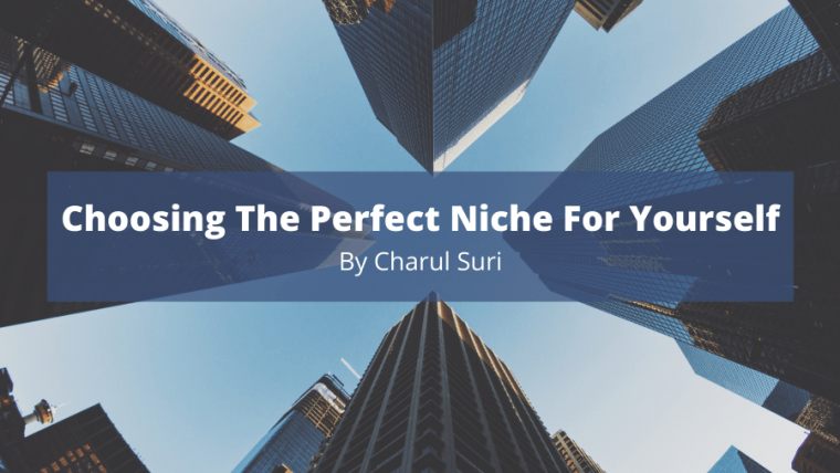 Choosing The Perfect Niche For Yourself